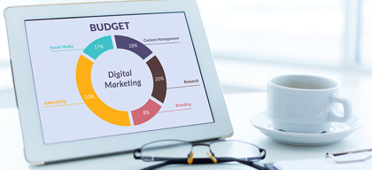 What is your Marketing Budget?