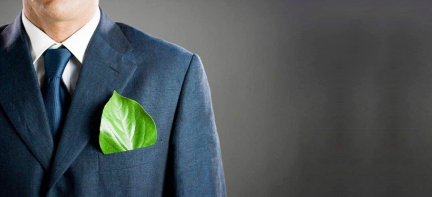 Go Green With These Eco-Friendly Business Ideas!