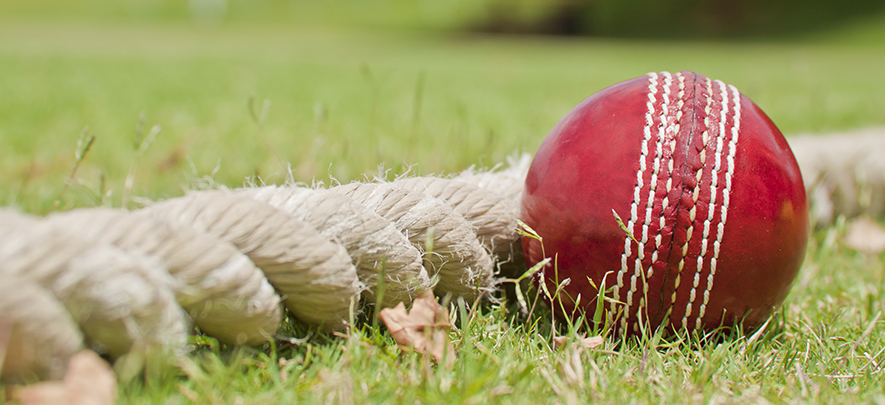 Business planning is like cricket - Here's how you can get a strategic edge