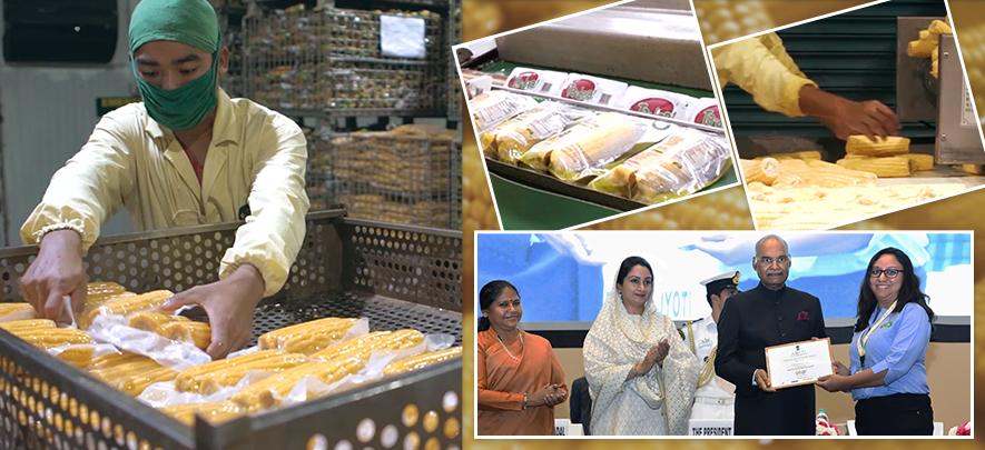 Bengaluru technopreneurs innovating to extend shelf life of fresh produce