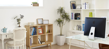 Understanding Vastu and Feng Shui to build harmonious living and working spaces