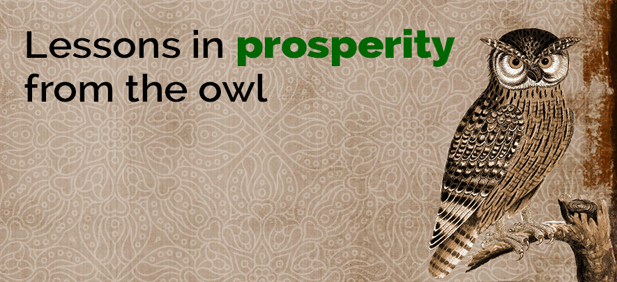 Lessons in prosperity from the owl