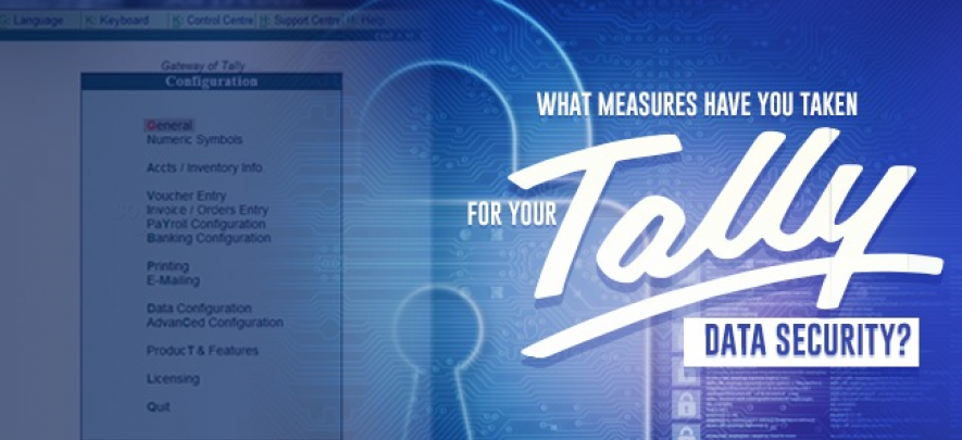What measures have you taken for your Tally data security?