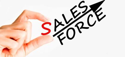 SMEs and salesforce