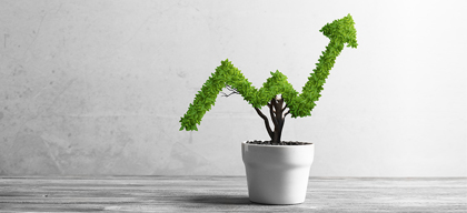 How to grow sales in a small business