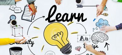 Learning organisation or learn in the organisation?