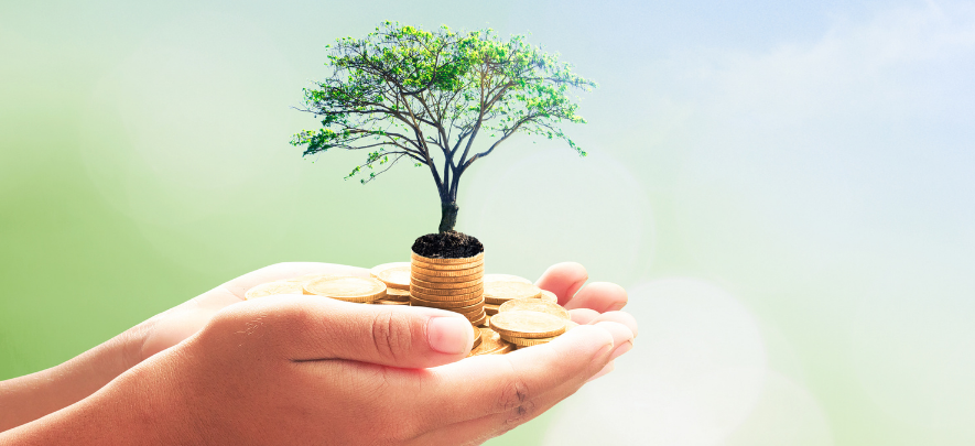 Venture Capital Financing: Considerations for Filipino SMEs