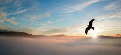 Preparing for the peak of purpose? Explore within your heart to win